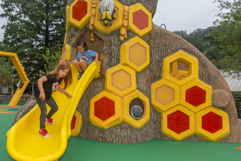 Me and the Bee, a themed playground at the Smithsonian's National Zoo in Washington D.C. All of the playground structures resemble aspects of the bee's world, including honeycomb structures, flowers and a climbable bee sculpture.