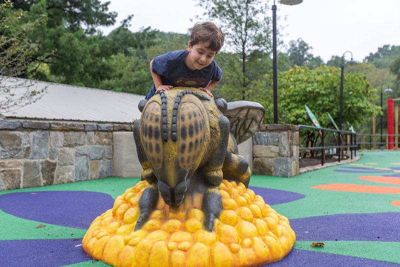 """Me and the Bee is a themed playground at the Smithsonian's National Zoo in Washington, D.C. It allows visitors to """"shrink down to the size of a honeybee"""" with honeycomb structures, flowers and a climbable bee sculpture."""
