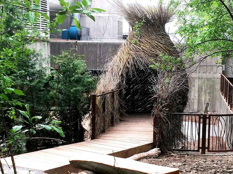 """The """"bird's nest"""" at Ontario Science Center in Toronto, Ontario, is a walk-in structure made of sticks."""